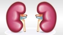 Un estudio revela que un fármaco para tratar EAP demora el daño renal