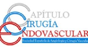El Capítulo de Cirugía Endovascular premia la mejor publicación científica de 2014